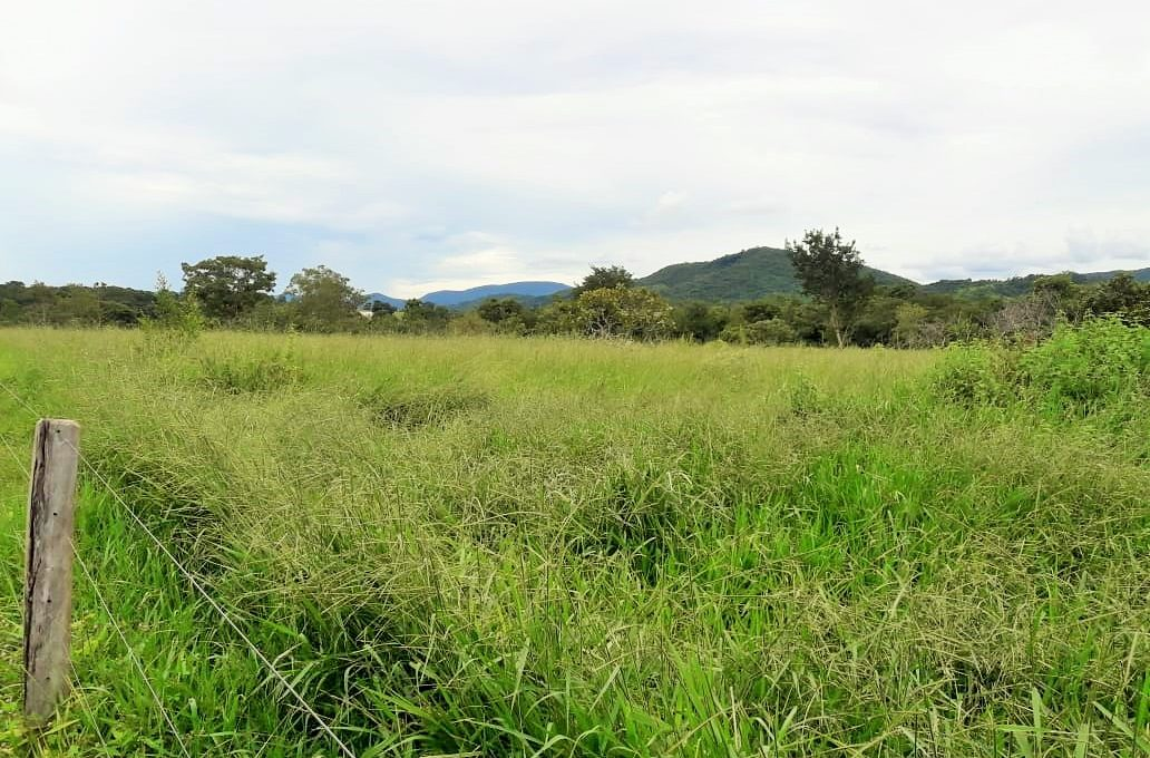 Venda de Imóveis em Goiás