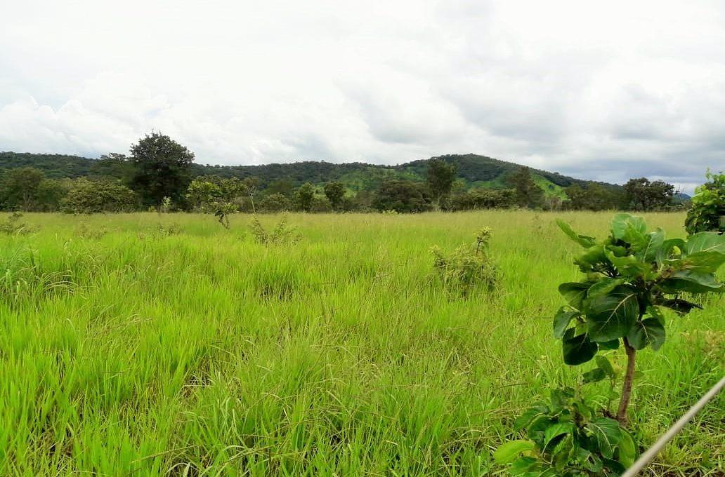 Venda de Imóveis em Goiás - Brasil - Pirenópolis