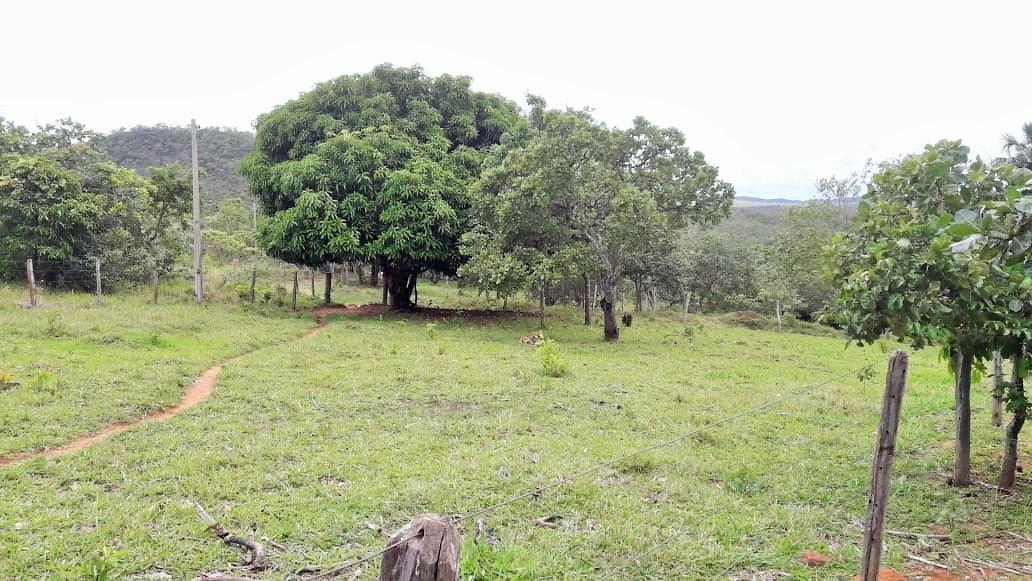 Imóveis em Pirenópolis - GO