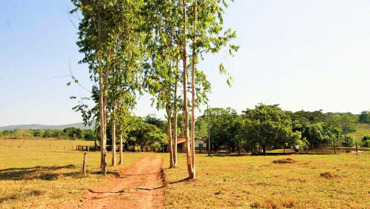 Brasília Imóveis em Pirenópolis