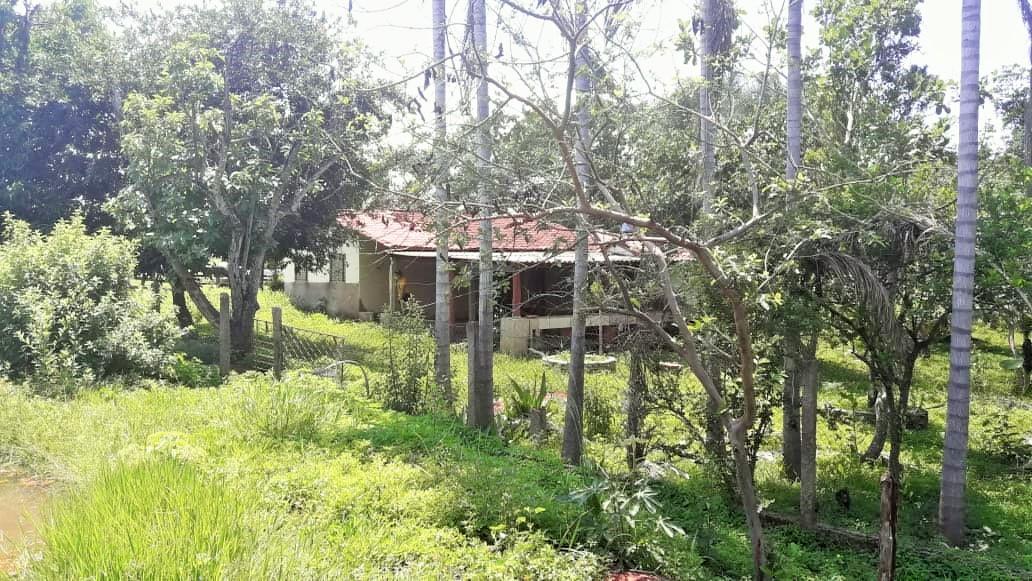 Pirenópolis - Goiás - Venda de Imóveis em Pirenópolis e Região